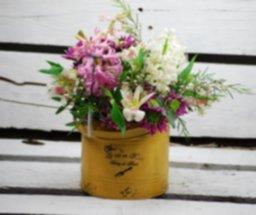 Narciso flor de temporada